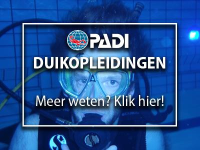 Onder leiding van Instructeurs en/of Divemasters organiseren wij duikopleidingen om duikvaardigheden op te bouwen en op peil te houden.